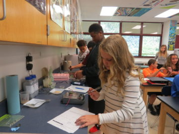 Pleasant Hills students participate in university research