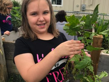 Conshohocken Elementary third graders prepare garden for fall