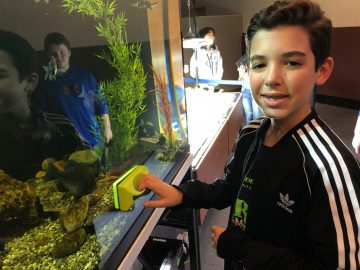 Colonial Middle School takes aquaponics across disciplines