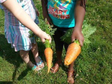 Growing our children through gardening education