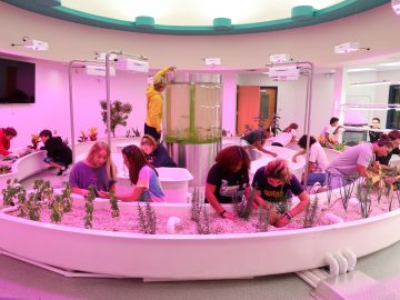 Ready, Set, Grow: Aquaponics Lab Opens in the West Shore S.D.