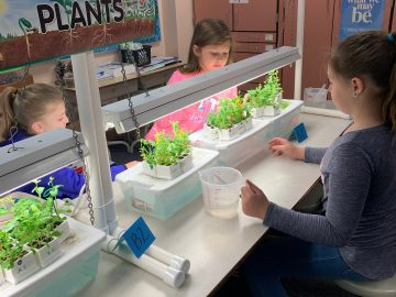 "Students are ""blooming"" at MAES"