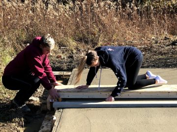 Staff and students build bee shed to study apiary science